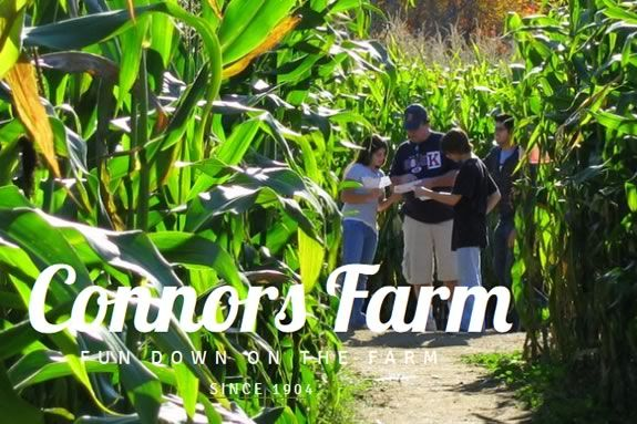 Corn MAiZE, Maze and Haunted Attractions at Connors Farm - Danvers, Massachusetts