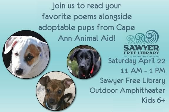 Poetry and Puppies at Sawyer Free Library in Gloucester Massachusetts