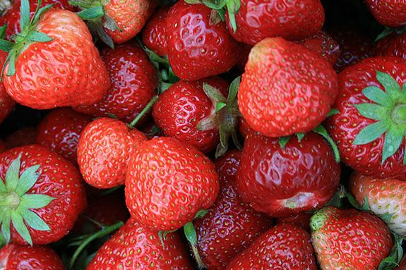 The Strawberry Festival at Russel Orchards features lots of fun and live music! Photo: ©Bill O'Connor
