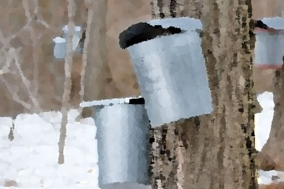 Come to IRWS for a watercolor workshop with Benda Sloan on maple sugaring.