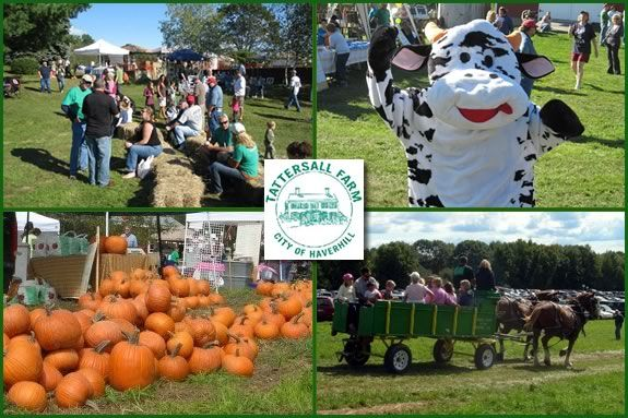 Tattersall Farm Day has lots of farm fun for the whole family!