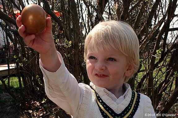 Join the fun of the egg hunt at the Stevens-Coolidge Estate in North Andover!